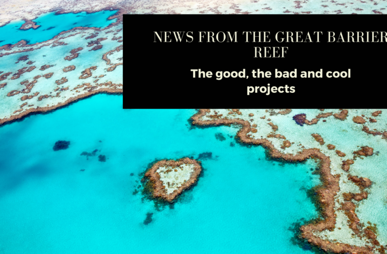 News from the Great Barrier Reef